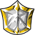 Flair Shield Medal