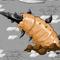 Sand Tail Thumbnail