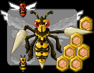 Bh2 wasp