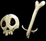 Human skull 5