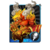 Flame Guard Card