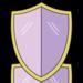 Enigma Shield