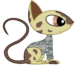 Agent Cat