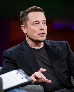 Elon Musk Based On
