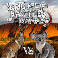Kangaroo vs Koala ft. Boomerang