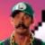 Luigi In Battle