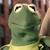Kermit The Frog In Battle