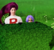 Team Rocket hiding behind the bushes