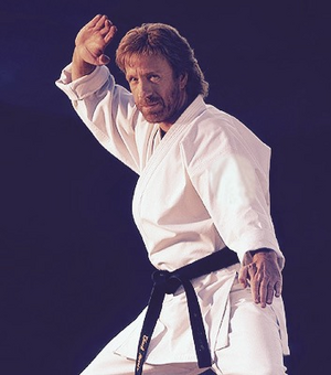 Chuck Norris Martial Artist Based On