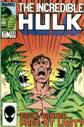 A Hulk Comic Cover