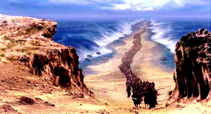 The Red Sea Based On