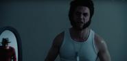 Freddy Krueger in Mirror Behind Wolverine