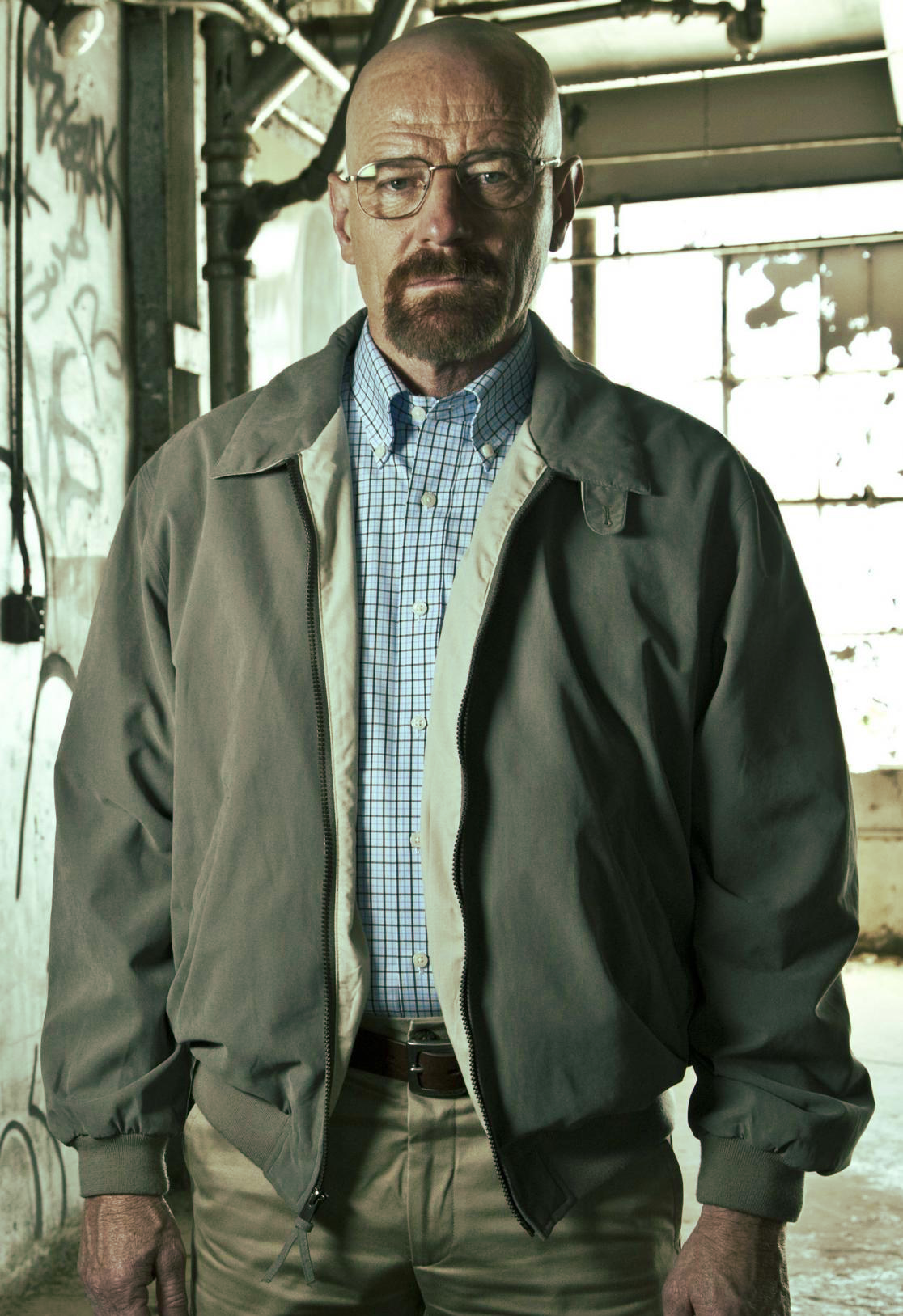 Walter White Based On