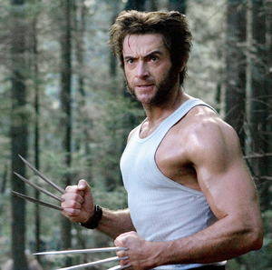 Wolverine Film Based On
