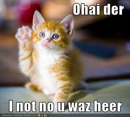 Ohai der I not no u waz heer