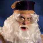 Dumbledore In Battle