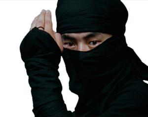 Urban Ninjas Based On