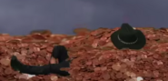 Chuck Norris In Pennies Error