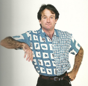 Robin Williams Based On