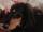 Bob (dog)
