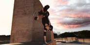 Skate Park Half-Pipe