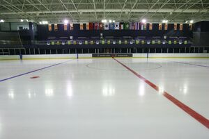 Ice Hockey Rink Based On