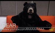 Dat bear