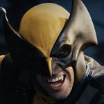 Wolverine In Battle
