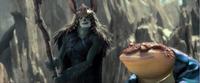 Mandrake and Bufo