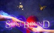 Soulbound-cover