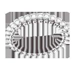 Clo bracelet delicate thumb (1)