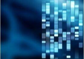DNA Fingerprint 3 - Stock Photo - stock