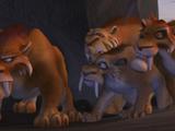 Sfora tygrysów szablastozębnych