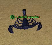 A seared scorpion