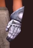 Exarch's Gauntlets of the Citadel (Equipped)