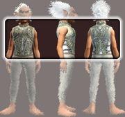 Curate's Plate Cuirass (Equipped)
