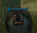 A shadow hound
