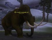 A woolly mammoth calf