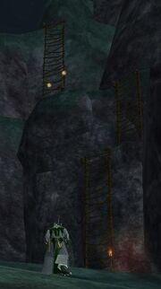 Pyrrin Roost ladders