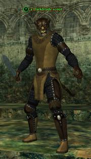 A Darkblade scout (kerran)
