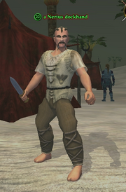 A Nerius dockhand
