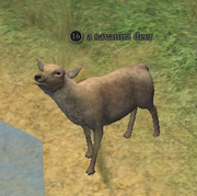 A savanna deer