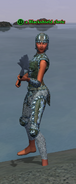 A Blackshield cleric (Timorous Deep) (half elf)