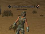 A Samiel plunder guard