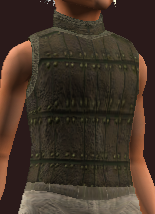Tanned Leather Tunic (Equipped)