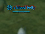 A blood belly