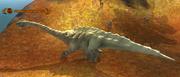 An aged apatodon