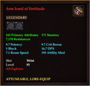 Arm band of Fortitude