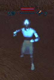 A Shroudsoul Noble