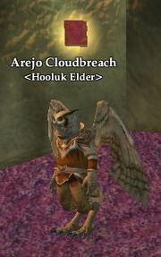 Arejo Cloudbreach